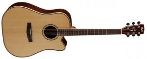 Cort Akustik Gitar