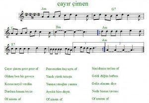 Çayır Çimen Gitar Notaları - Erturgut Sanat